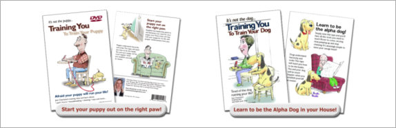 dvds-training-pages